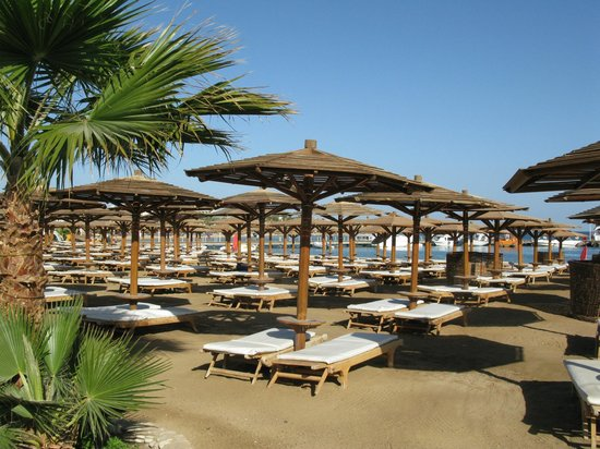 Steigenberger Makadi Hotel:                   Beach area - about 15min walk from hotel