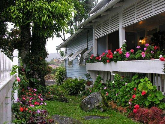 Hotel Panamonte: Flores en el Hotel