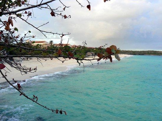 Paradisus Rio de Oro Resort & Spa:                   Вид на пляж                 
