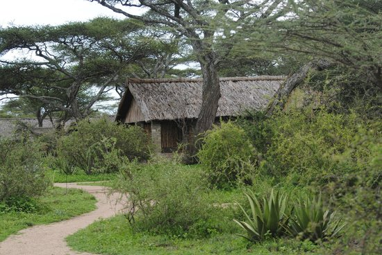 Ndutu Safari Lodge:                   One of the cabins