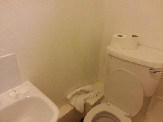 Palace Court Hotel:                   toilet