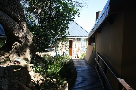 Wilderness Beach house: Weg von unserem Chalet zum Haupthaus