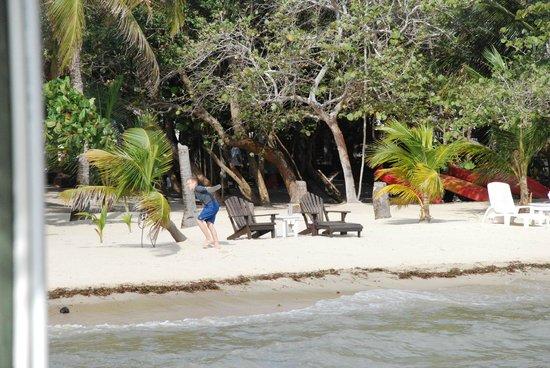 Maya Beach Hotel:                   Beach
