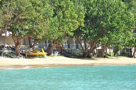 بلو ووترز إن:                   Blue Waters Inn, Tobago                 