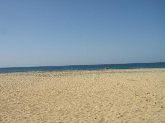 Melia Tortuga Beach Resort & Spa:                   Heerlijk strand