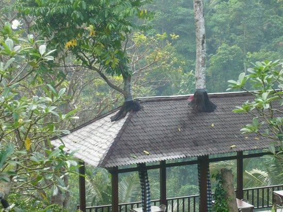Beji Ubud Resort:                                     garden
