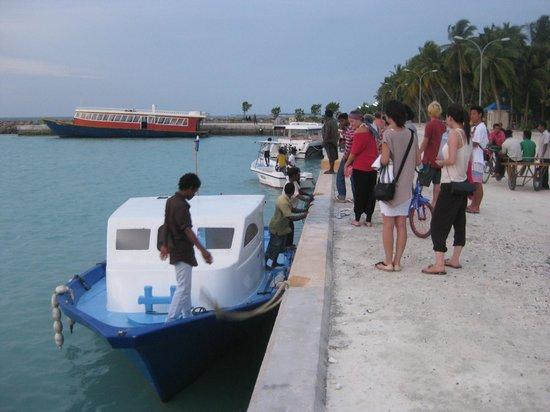 Picnic Inn: Maafushi Harbour