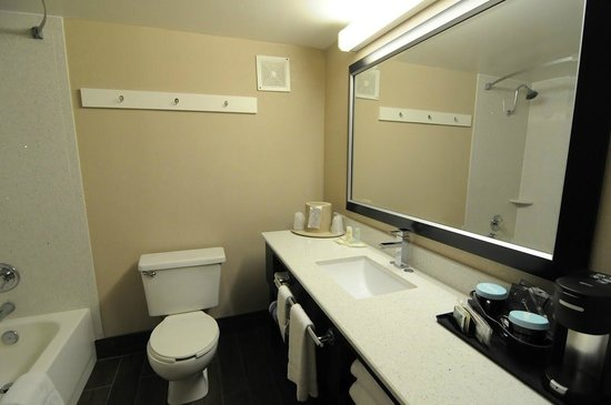Quality Inn & Suites-Capital District: New Bathroom