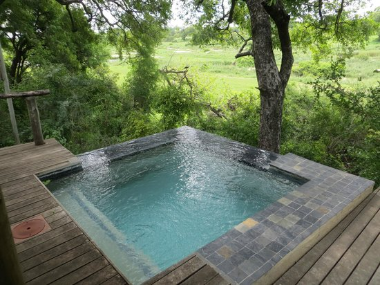 Dulini River Lodge:                   Plunge pool view