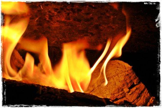 Retorrick Mill: Log burner in the chalet