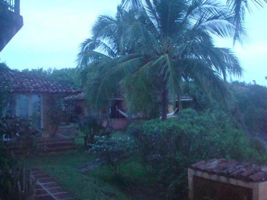 Hotel Villa Romana:                   The Tropics