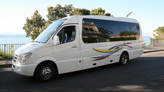 Caruso Limo Private Day Tours: Mercedes Sprinter