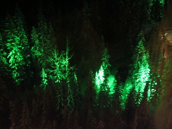 Rimrock Resort Hotel: Lights in the trees