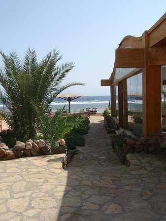 Blue Beach Club: View to the sea and boulevard at beach side next to bar