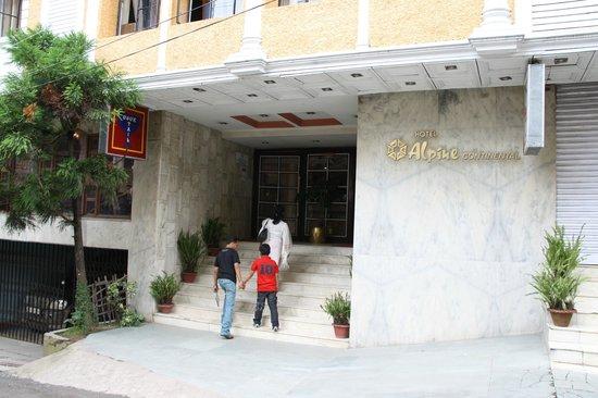 Hotel Alpine Continental 사진