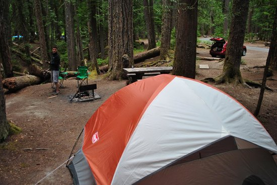 Site D008 Picture of Ohanapecosh Campground Packwood TripAdvisor