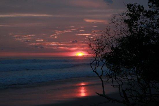 Hotel Raratonga:                   sunset
