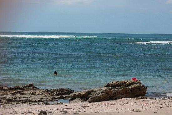 Hotel Raratonga:                   Reef