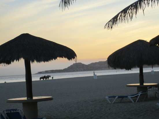 Holiday Inn Resort Los Cabos All-Inclusive:                   beach