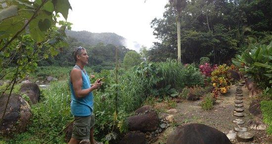 Villas Pico Bonito:                   inside the grounds