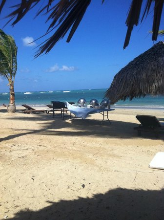 Zoetry Agua Punta Cana:                   barbeque on the beach