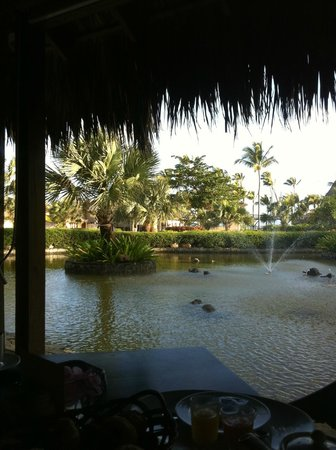 Zoetry Agua Punta Cana:                   view from Amaya Restaurant