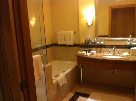 Four Seasons Hotel Amman:                   The gorgeous, huge bathroom