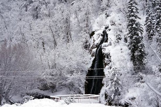 Log Haven: Main waterfall viewed in the main dining room.