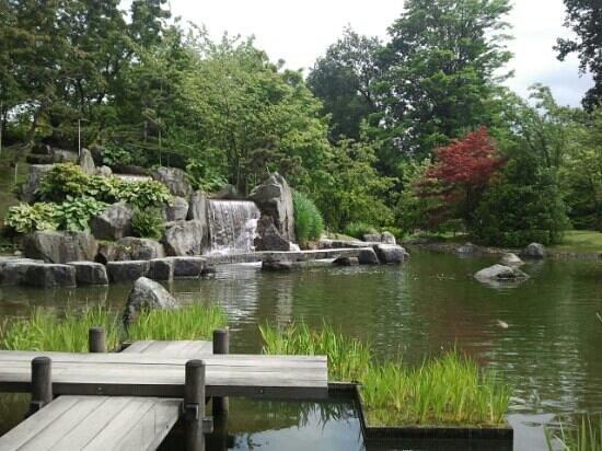 Jardin Japonais Picture Of Japanese Tuin Hasselt Tripadvisor