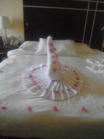 Hilton Sharks Bay Resort: our towel art