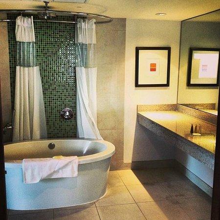 Congress Hotel South Beach:                   big spacious bathroom! LOVED the tub