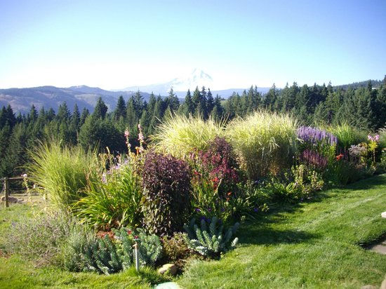Sakura Ridge - The Farm and Lodge:                   Beautiful gardens surround the house