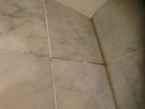 هايد بارك سويتس - أبارتمينتس: Moho y suciedad en las paredes de la ducha 