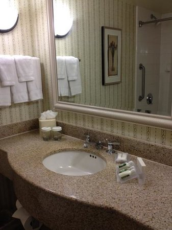 Hilton Garden Inn McAllen Airport: normal bathroom amenities