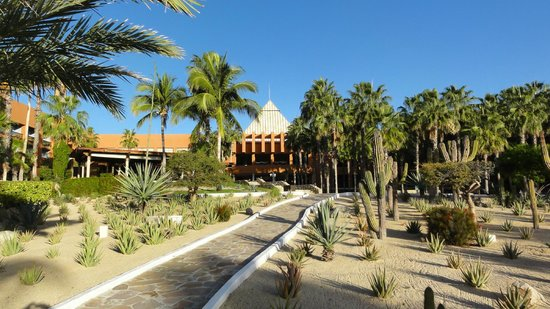 Melia Cabo Real All-Inclusive Beach & Golf Resort: giardini