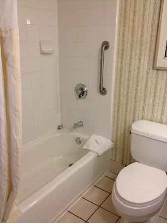 Hilton Garden Inn McAllen Airport : average bathroom