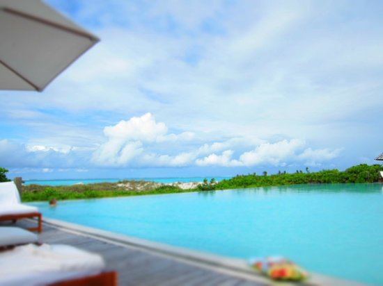 COMO Parrot Cay, Turks and Caicos:                   Pool