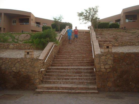 Romance Hotel:                                                                         السلالم كثيرة فى طريق ال