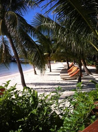 Ramon's Village Resort:                   beach