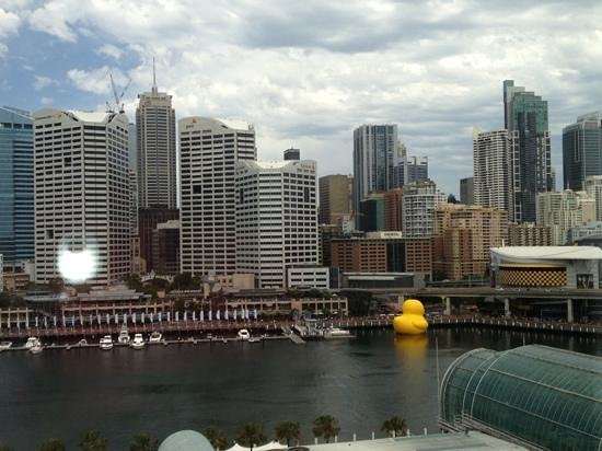 Ibis Sydney Darling Harbour:                   the view from our room!