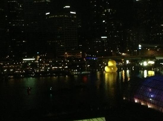 Ibis Sydney Darling Harbour:                   view from our room