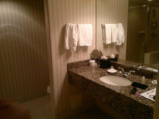 Paramount Hotel : Bathroom
