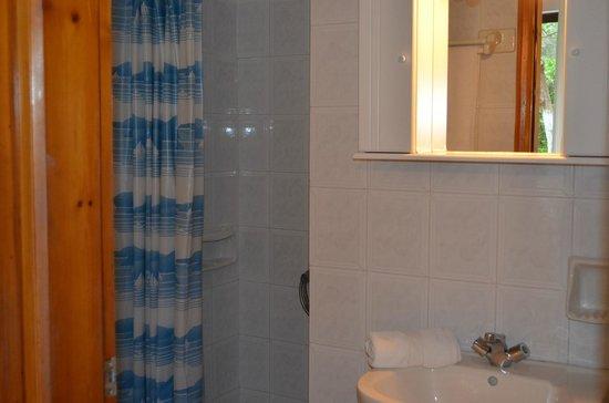 Emilia Apartments: Shower in Studio