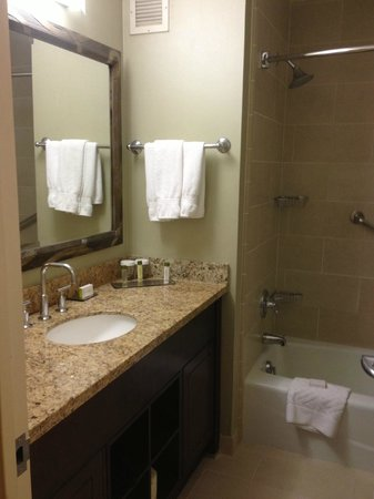 Doubletree by Hilton Chicago Magnificent Mile: bathroom