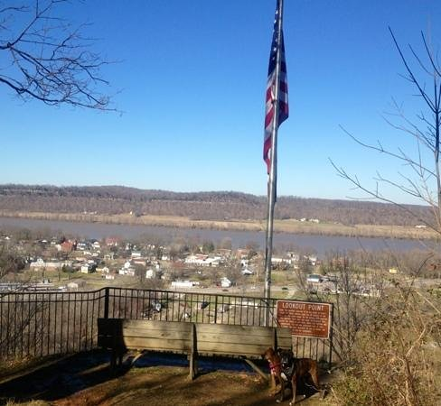 West Point, KY: Fort Duffield view point over to the Ohio River :)