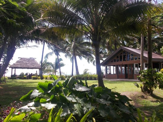 First Landing Beach Resort & Villas:                   Resort Grounds