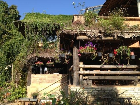 Phu Chaisai Mountain Resort:                   rooms are really green