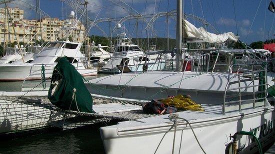 Traveler Catamaran:                   Catamaran