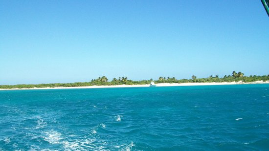 Traveler Catamaran:                   Island reef