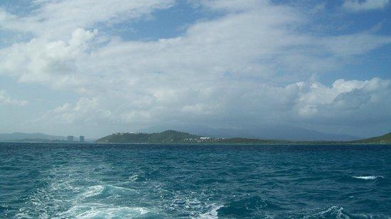 Traveler Catamaran照片